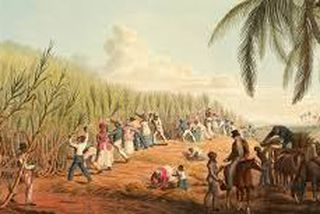 Esclaves sur la plantation 1