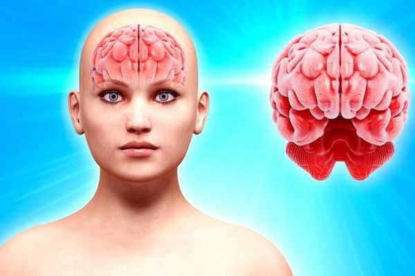 Il y aurait un lien entre la maladie d'Alzheimer et l'exposition au DDT