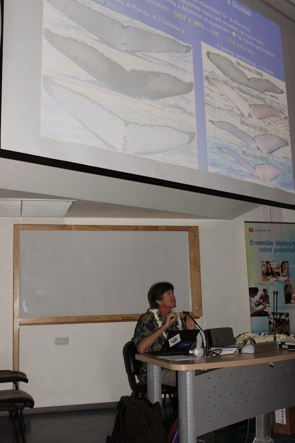 conférence CCISM milieux marins australes