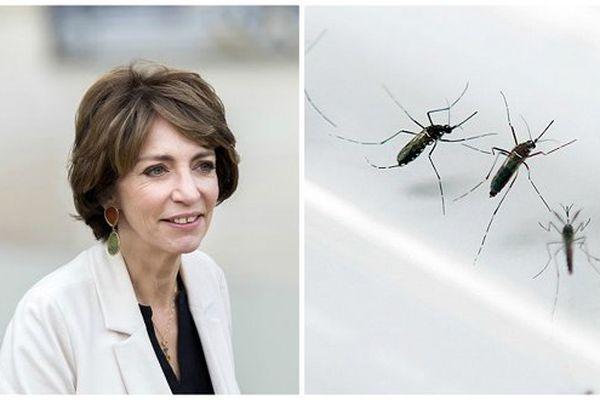 Virus Zika Marisol Touraine
