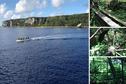 """""""Makatea, agir pour la biodiversité"""" : la jeunesse de l'île s'engage"""