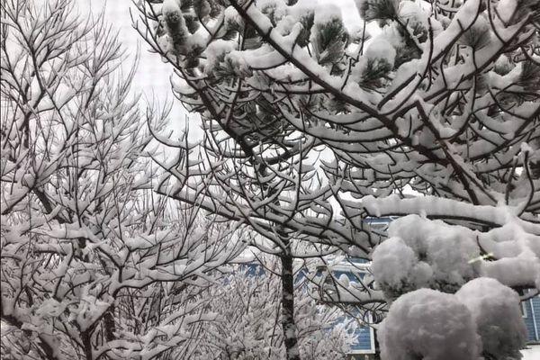 De la neige et du vent sont attendus à Saint-Pierre et Miquelon dans les prochaines 24 heures