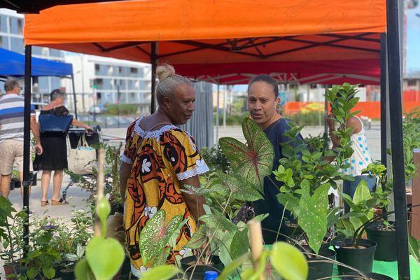 Garden party, marché aux plantes, Dumbéa, 15 mai 2021