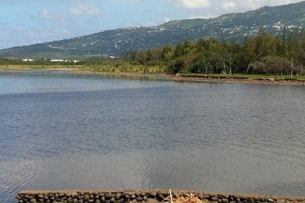 L'étang du Gol vidé