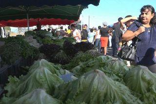 1er marché forain de la Rivière des Galets au Port 020918