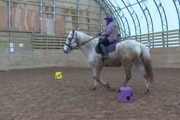 equitation equifun
