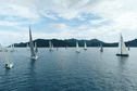 Tahiti Pearl Regatta : Les conditions s'améliorent