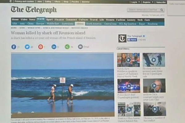 Requin reunion presse internationale