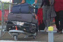 Passagers arrivent à la Martinique.