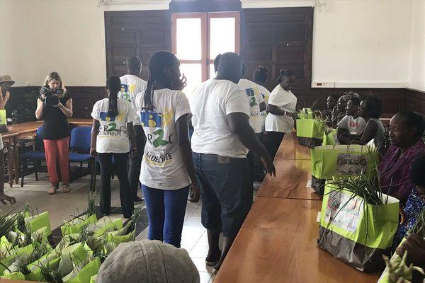 Distribution fruits et légumes