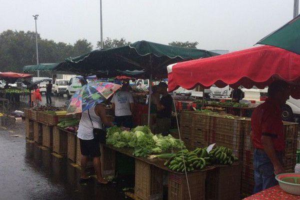 Marché des Camélias pluie