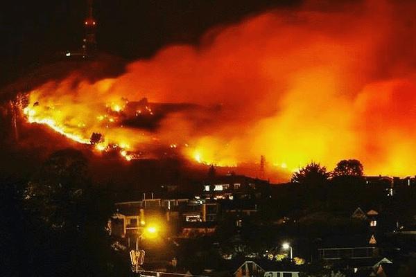 Un incendie de forêt en Nouvelle-Zélande