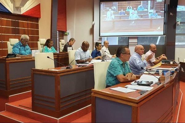 Coronavirus, séance de la commission permanente du Congrès, 11 avril 2020