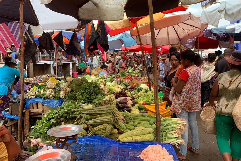 Une volonté commune de renforcer la coopération agricole entre Mayotte et Madagascar. - Mayotte la 1ère