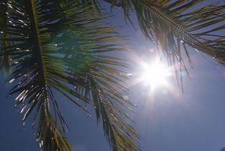 Chaleur, soleil
