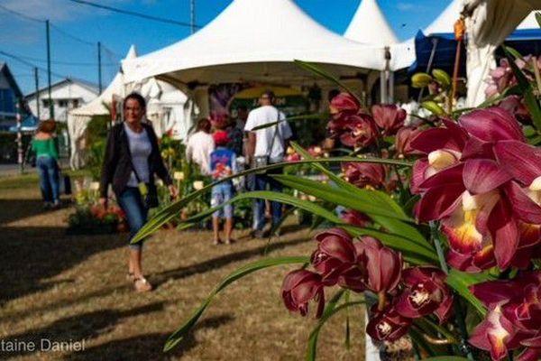 Festi'Plantes 13ème édition 080718