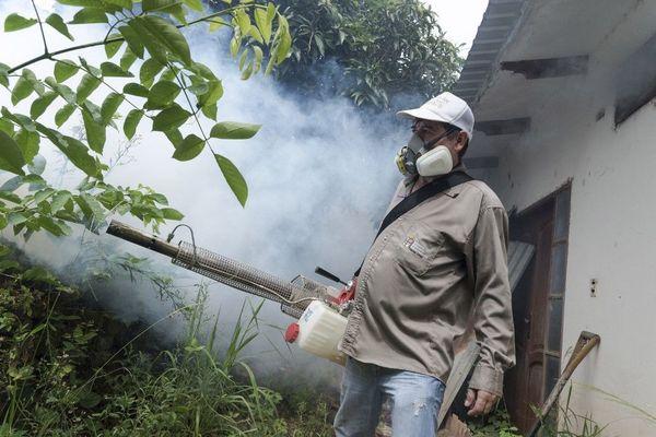 Un membre des services de santé boliviens pulvérise du produit contre les moustiques porteurs de dengue.