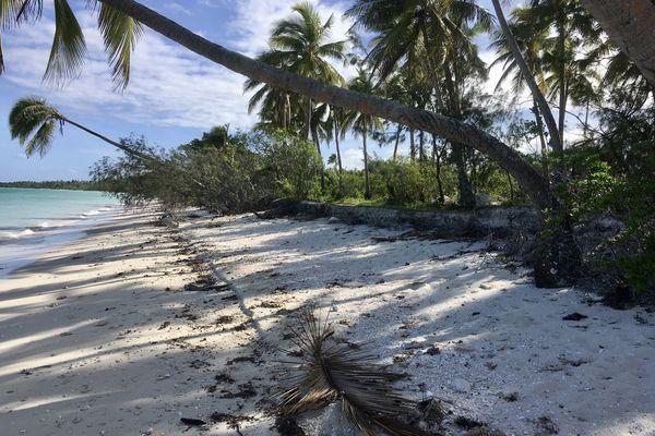 Ouvéa : quand l'érosion grignote petit à petit l'île la plus proche du paradis