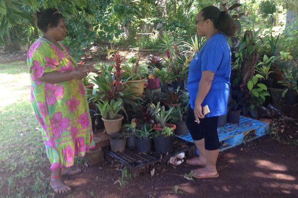 Prévention de la dengue à Yaté, tribu de Waho (3 mars 2018)