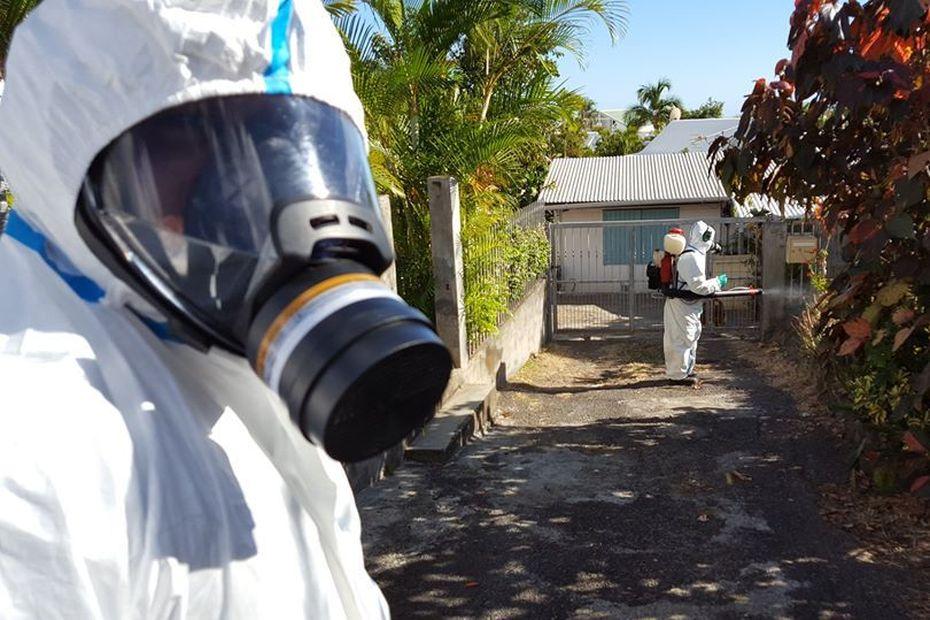 Dengue : 60 cas hebdomadaires recensés, 16 communes concernées - Réunion la 1ère - Outre-mer la 1ère