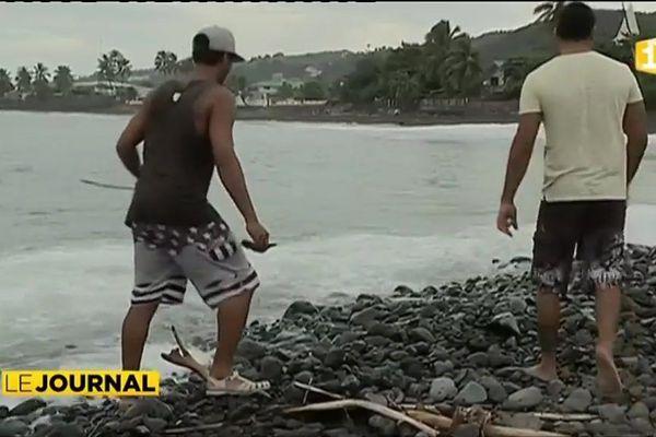 Pollution : quand les surfeurs veulent faire place nette