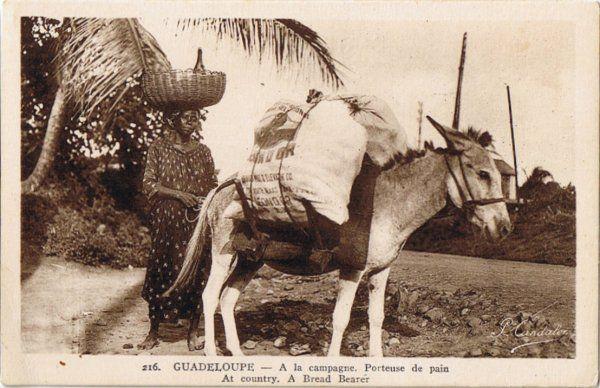 Porteuse de pain Guadeloupe