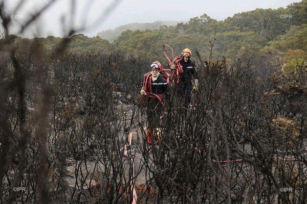 Incendie au Maïdo 4ème jour de lutte contre le feu 101120