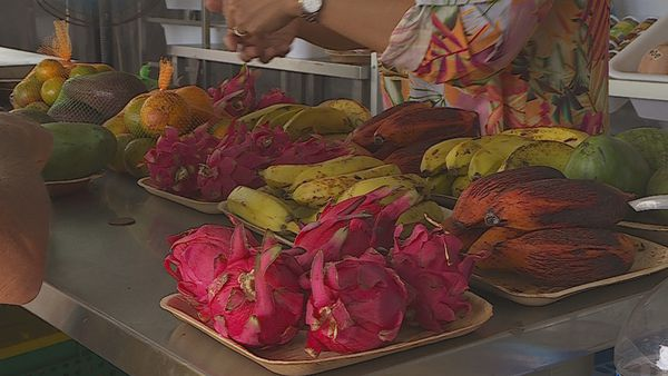 A Moorea, Paul Yuen récolte les fruits de son labeur