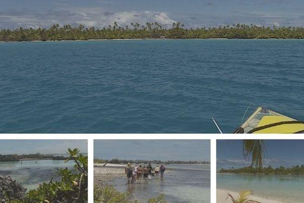 Rangiroa : quand le récif vous dévoile ses trésors