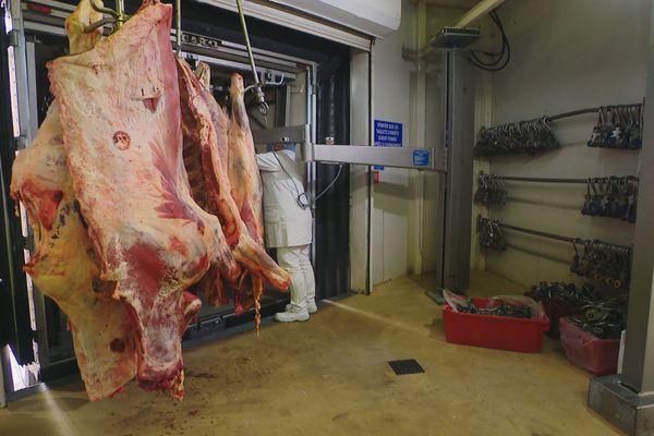 Filière bovine confinement