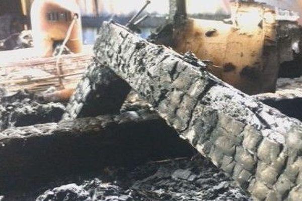 bois brûlé incednie