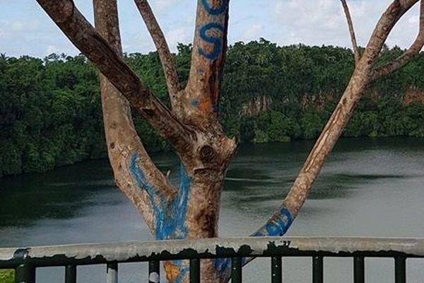 belvédère du lac Lalolalo