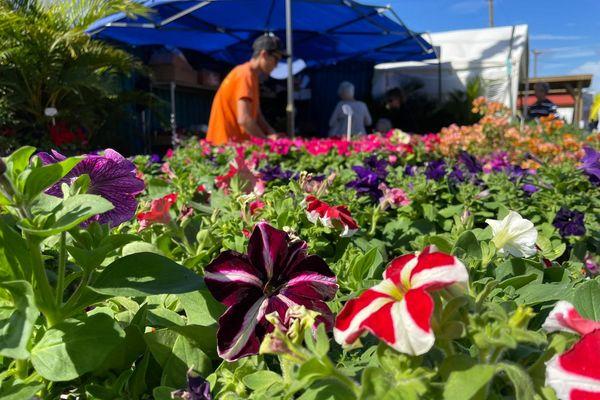 Salon du jardinage 2021