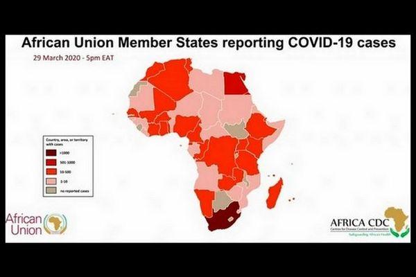 Carte de l'Afrique Covid-19 1er avril 2020
