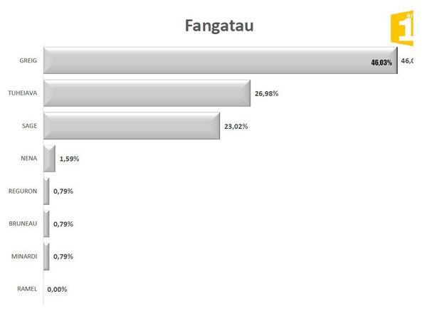 Legislatives 1er tour : résultats Fangatau