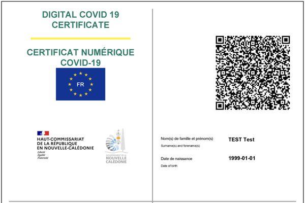 Certificat Covid numérique, éléments