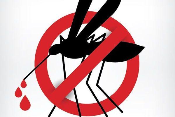 La lutte contre la dengue est l'affaire de tous