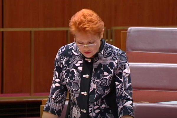 """La sénatrice australienne Pauline Hanson défend son projet de motion """"It's OK to be white"""", octobre 2018"""