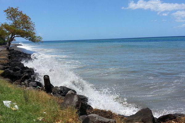 Forte mer côte caraïbe