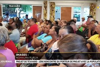 Le projet de lotissement de Teavaro suscite l'inquiétude