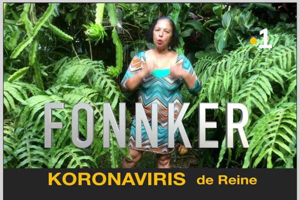 """Koronaviris"" de Reine"