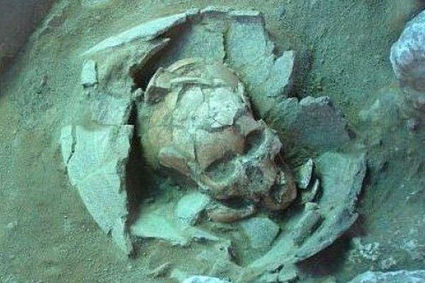 crâne vanuatu