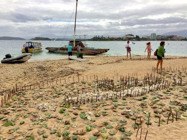 Journée mondiale de l'océan 2019