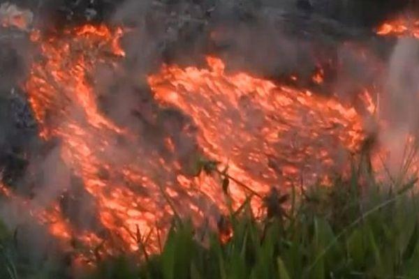 VIDEO. Des coulées de lave menacent la population à Hawaï
