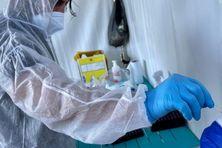 Covid-19: le variant Delta concerne désormais plus de 47 % des contaminations à La Réunion.