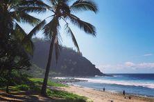 La plage de Grande-Anse, à Petite-Ile, figure dans le top 10 des plus belles plages de France en 2020.