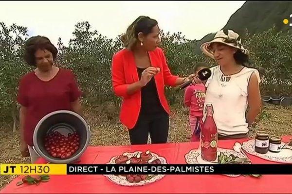 Isabelle Allane à la Plaine-des-palmistes