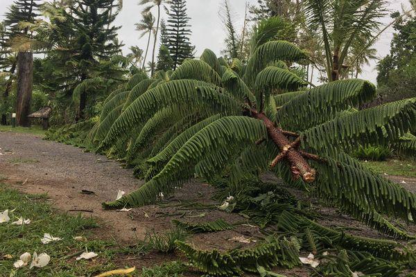 cyclone GITA IDP samedi 17 février