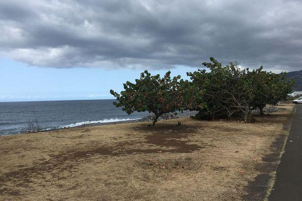La Réunion - Front de mer