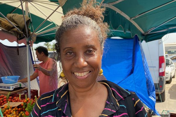 Jacqueline Arnaud, syndicaliste et contrôleur de finances publiques
